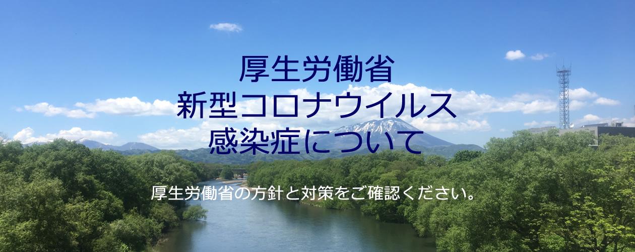 岩手 県 pcr 検査 数